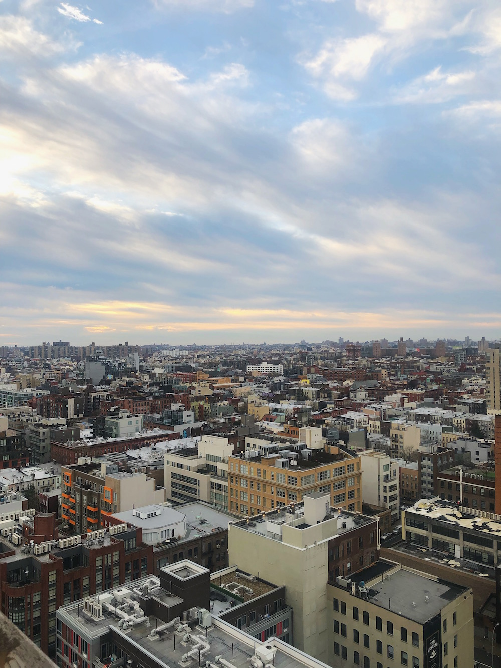 Best things to do in NYC in January
